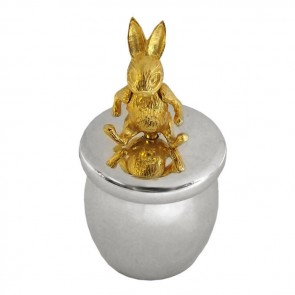 Sterling Silver And Gold Plated Rabbit Tooth Fairy Box