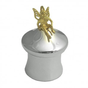 Sterling Silver And Gold Plated Fairy Tooth Fairy Box